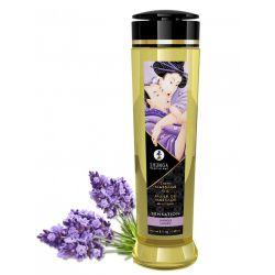 Erotic Massage Oil - Lavender
